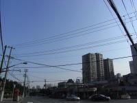 電線 in the sky